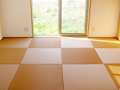 縁なし・半畳の琉球タタミ