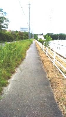 瀬戸市の道路 全行程8Km