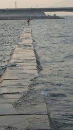 堤防で釣り