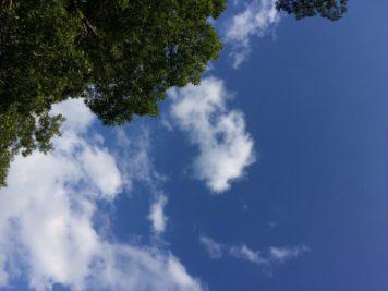 青い空|長野県阿寺渓谷