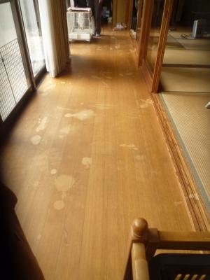 張替え前の床1