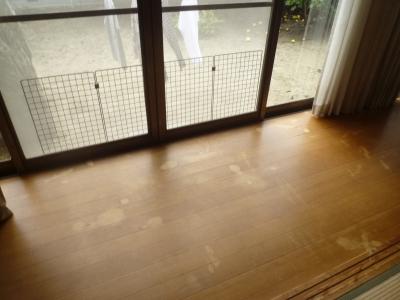 張替え前の床2