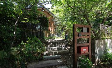 愛知県 東郷町 リノベーション<br>自然と優しい素材に囲まれたニュートラルな暮らし