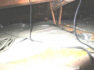 小屋裏から筋交の現場調査