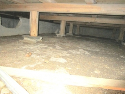 床下の現場調査