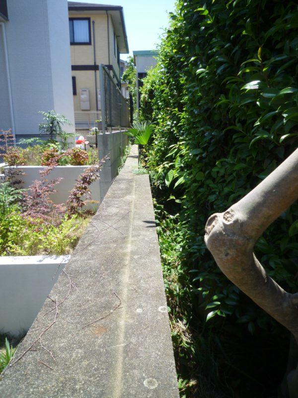 フェンス撤去後の塀