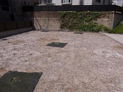 造園:「クラピア」を数か所に植栽
