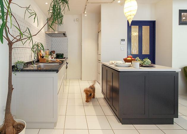 一緒に暮らす愛犬にも優しい住まいづくり。名古屋市のマンションリノベーション。